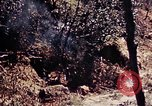 Image of 1st Battalion 4th Marines Okinawa Ryukyu Islands, 1945, second 26 stock footage video 65675052864