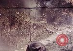 Image of 1st Battalion 4th Marines Okinawa Ryukyu Islands, 1945, second 33 stock footage video 65675052864