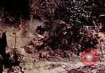 Image of 1st Battalion 4th Marines Okinawa Ryukyu Islands, 1945, second 60 stock footage video 65675052864