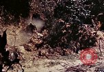 Image of 1st Battalion 4th Marines Okinawa Ryukyu Islands, 1945, second 62 stock footage video 65675052864