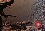 Image of 29th Marine Division Okinawa Ryukyu Islands, 1945, second 50 stock footage video 65675052879