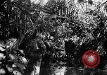 Image of 182nd Regiment Cebu Philippines, 1945, second 50 stock footage video 65675052929