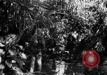 Image of 182nd Regiment Cebu Philippines, 1945, second 51 stock footage video 65675052929