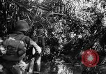 Image of 182nd Regiment Cebu Philippines, 1945, second 52 stock footage video 65675052929