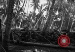 Image of 182nd Regiment Cebu Philippines, 1945, second 54 stock footage video 65675052929
