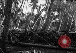 Image of 182nd Regiment Cebu Philippines, 1945, second 55 stock footage video 65675052929