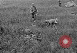 Image of 305th Infantry 77th Division Yuza Okinawa Ryukyu Islands, 1945, second 20 stock footage video 65675052957