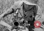 Image of 305th Infantry 77th Division Yuza Okinawa Ryukyu Islands, 1945, second 35 stock footage video 65675052957