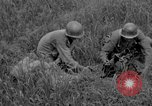 Image of 305th Infantry 77th Division Yuza Okinawa Ryukyu Islands, 1945, second 62 stock footage video 65675052957