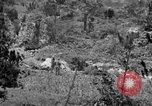 Image of United States soldiers Okinawa Ryukyu Islands, 1945, second 9 stock footage video 65675052960