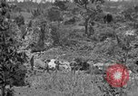 Image of United States soldiers Okinawa Ryukyu Islands, 1945, second 23 stock footage video 65675052960