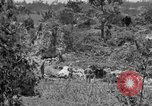 Image of United States soldiers Okinawa Ryukyu Islands, 1945, second 28 stock footage video 65675052960