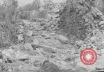 Image of 305th Infantry 77th Division Yuza Okinawa Ryukyu Islands, 1945, second 34 stock footage video 65675052965