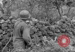 Image of 305th Infantry 77th Division Yuza Okinawa Ryukyu Islands, 1945, second 53 stock footage video 65675052965
