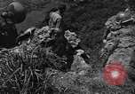 Image of 32nd Infantry 7th Division Okinawa Ryukyu Islands, 1945, second 26 stock footage video 65675052967