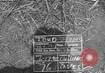 Image of 32nd Infantry 7th Division Okinawa Ryukyu Islands, 1945, second 4 stock footage video 65675052970