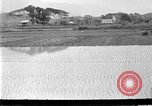 Image of rice paddies Japan, 1920, second 4 stock footage video 65675052988