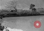 Image of rice paddies Japan, 1920, second 45 stock footage video 65675052988