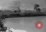 Image of rice paddies Japan, 1920, second 46 stock footage video 65675052988