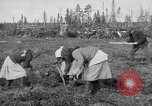 Image of Russians Archangel Russia, 1918, second 13 stock footage video 65675053040
