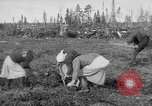 Image of Russians Archangel Russia, 1918, second 14 stock footage video 65675053040