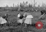Image of Russians Archangel Russia, 1918, second 15 stock footage video 65675053040