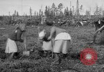 Image of Russians Archangel Russia, 1918, second 16 stock footage video 65675053040
