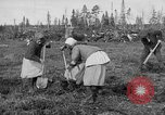 Image of Russians Archangel Russia, 1918, second 17 stock footage video 65675053040