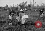 Image of Russians Archangel Russia, 1918, second 18 stock footage video 65675053040