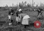 Image of Russians Archangel Russia, 1918, second 19 stock footage video 65675053040