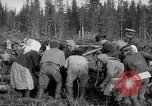 Image of Russians Archangel Russia, 1918, second 30 stock footage video 65675053040