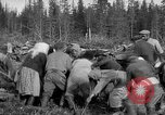 Image of Russians Archangel Russia, 1918, second 31 stock footage video 65675053040