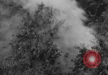 Image of Bell 30 helicopter spraying pesticides United States USA, 1942, second 33 stock footage video 65675053061