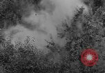 Image of Bell 30 helicopter spraying pesticides United States USA, 1942, second 35 stock footage video 65675053061