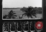 Image of Duke and Duchess of Windsor Miami Florida USA, 1940, second 11 stock footage video 65675053150