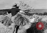 Image of Women Land Army United Kingdom, 1939, second 7 stock footage video 65675053192