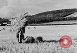 Image of Women Land Army United Kingdom, 1939, second 17 stock footage video 65675053192