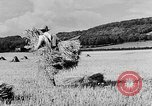 Image of Women Land Army United Kingdom, 1939, second 19 stock footage video 65675053192