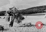 Image of Women Land Army United Kingdom, 1939, second 20 stock footage video 65675053192