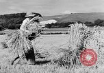 Image of Women Land Army United Kingdom, 1939, second 22 stock footage video 65675053192