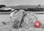Image of Women Land Army United Kingdom, 1939, second 23 stock footage video 65675053192