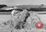 Image of Women Land Army United Kingdom, 1939, second 24 stock footage video 65675053192
