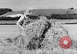 Image of Women Land Army United Kingdom, 1939, second 25 stock footage video 65675053192