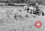 Image of Women Land Army United Kingdom, 1939, second 26 stock footage video 65675053192