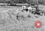 Image of Women Land Army United Kingdom, 1939, second 27 stock footage video 65675053192