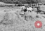 Image of Women Land Army United Kingdom, 1939, second 29 stock footage video 65675053192