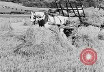 Image of Women Land Army United Kingdom, 1939, second 31 stock footage video 65675053192