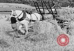 Image of Women Land Army United Kingdom, 1939, second 33 stock footage video 65675053192