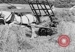 Image of Women Land Army United Kingdom, 1939, second 35 stock footage video 65675053192