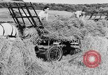 Image of Women Land Army United Kingdom, 1939, second 37 stock footage video 65675053192